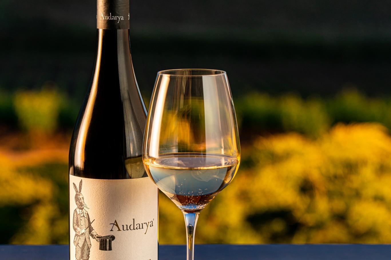 fermentino Audarya Sardegna vino bianco