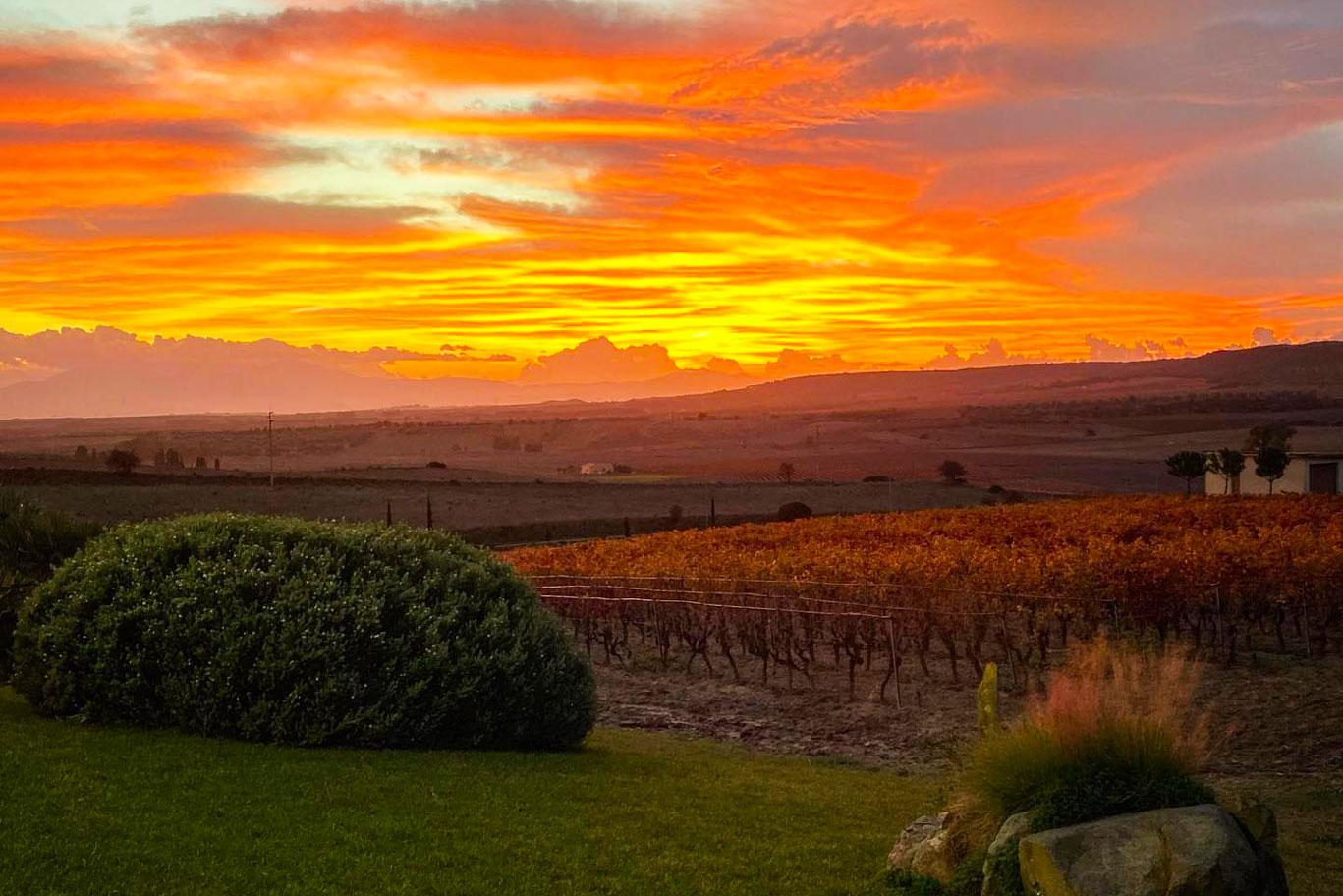 audarya tramonto degustazione natura
